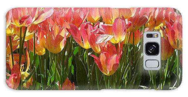 Pella Tulips Yellow Pink Galaxy Case