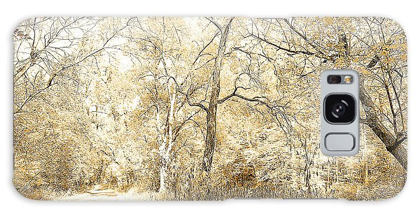 Pennsylvania Autumn Woods Galaxy Case