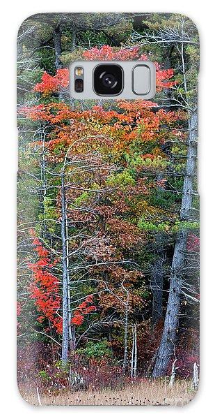 Pennsylvania Laurel Highlands Autumn Galaxy Case by John Stephens