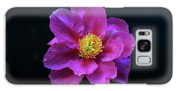Peony - Beautiful Flowers And Decorative Foliage On The Right Is One Of The First Places Among The G Galaxy Case