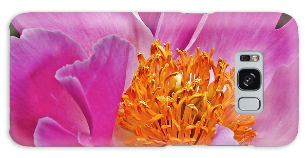 Pink Flower Peony Garden Wall Art Galaxy Case