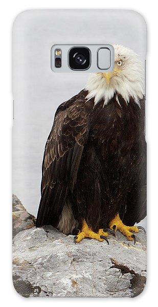 Perched Bald Eagle Galaxy Case