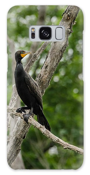 Perched Double-crested Cormorant Galaxy Case