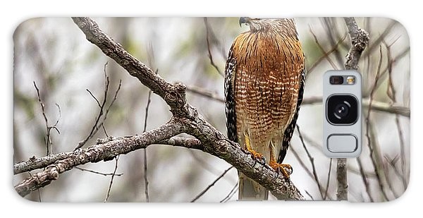 Perched Red Shouldered Hawk Galaxy Case