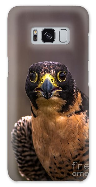 Peregrine Falcon Profile 2 Galaxy Case