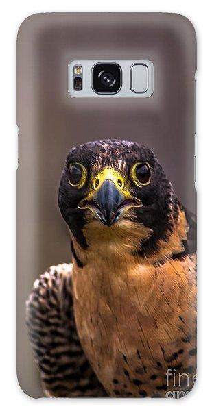 Peregrine Falcon Profile 2 Galaxy Case