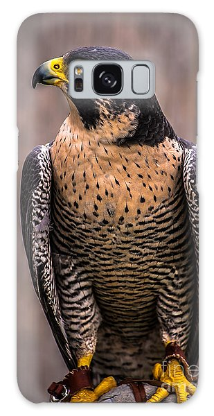 Peregrine Falcon Profile Galaxy Case