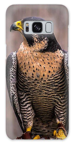 Peregrine Falcon Profile Galaxy Case