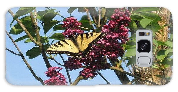 Yellow Swallowtail And Lilac Galaxy Case