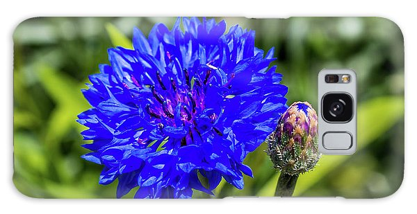 Perky Cornflower Galaxy Case