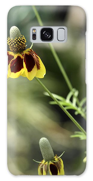 Perky Yellow Galaxy Case by Barbara Middleton