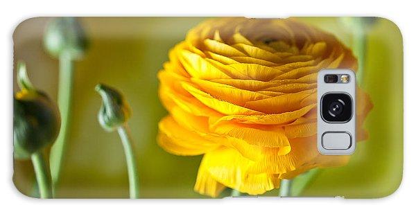 Bud Galaxy Case - Persian Buttercup Flower by Nailia Schwarz