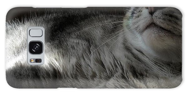 Pet Portrait - Lily Three Galaxy Case