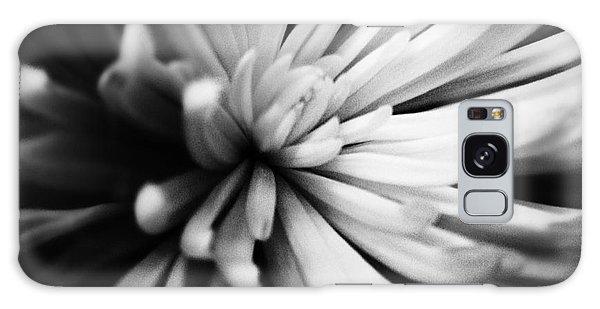 Petals Galaxy Case