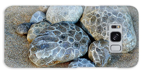 Petoskey Stones Galaxy Case