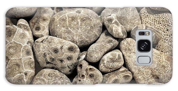 Petoskey Stones Vl Galaxy Case