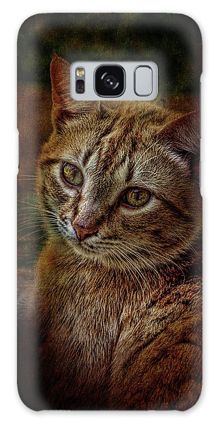 Pets Fat Cat Portrait 2 Galaxy Case