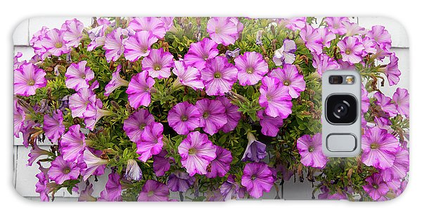 Galaxy Case featuring the photograph Petunias On White Wall by Elena Elisseeva