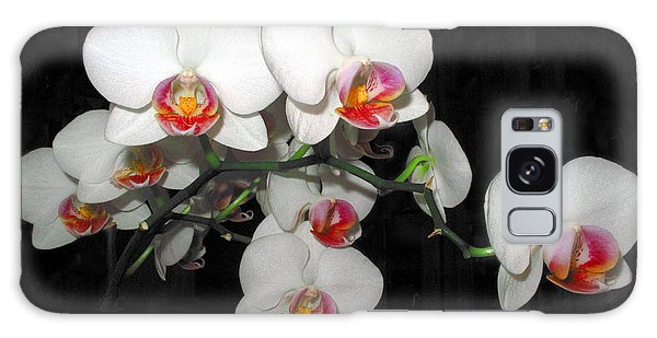 Phalaenopsis Orchids Galaxy Case by Joyce Dickens
