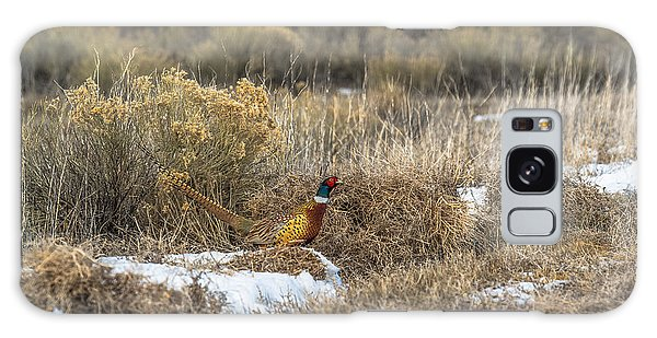 Pheasant Glory Galaxy Case