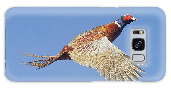 Pheasant Wings Galaxy Case
