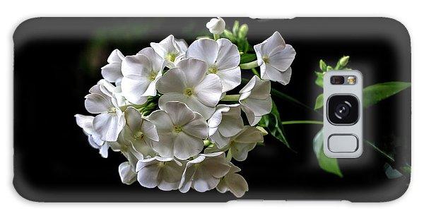 Phlox Flowers Galaxy Case