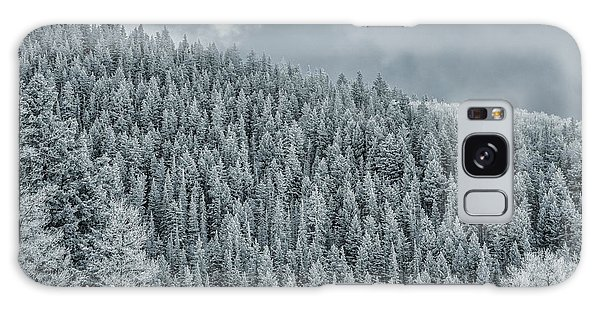 Galaxy Case featuring the photograph Winter Pines by Lou Novick
