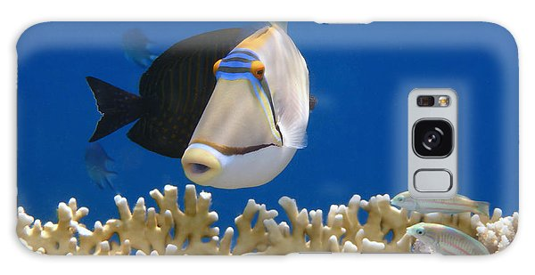 Picasso Fish And Klunzingerwrasse Galaxy Case