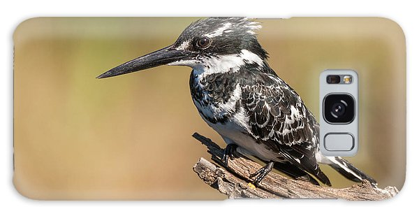 Pied Kingfisher Galaxy Case