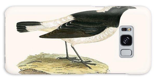 Song Bird Galaxy Case - Pied Wheatear by English School