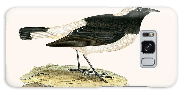 Pied Wheatear Galaxy Case