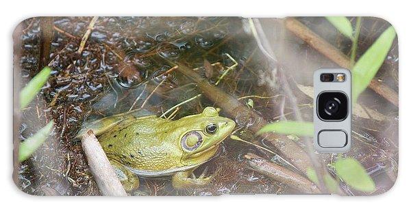 Pig Frog Galaxy Case by David Grant