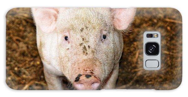 Pig Galaxy Case