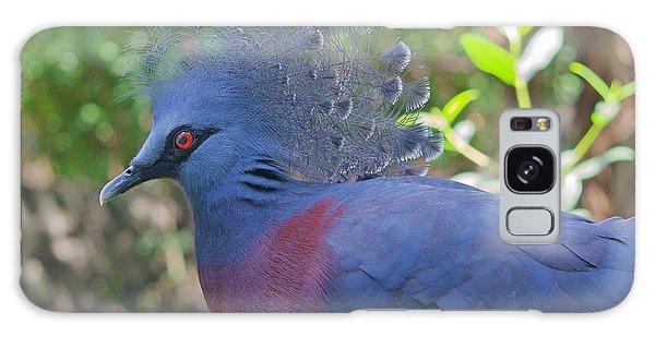 Pigeon Elegante Galaxy Case by Judy Kay