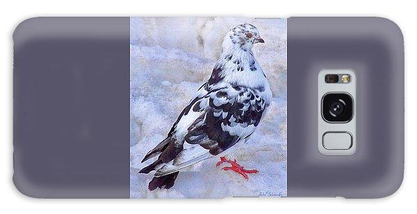 Pigeon On Ice  1 Galaxy Case by John Selmer Sr