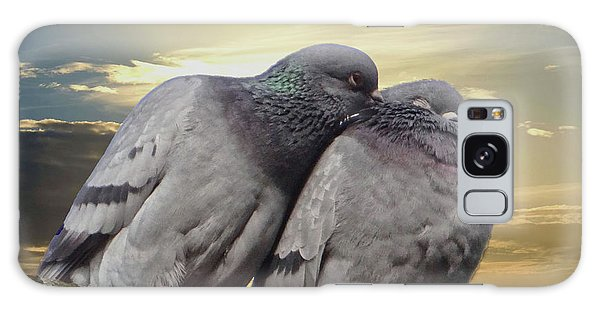 Pigeons In Love, Smooching On A Branch At Sunset Galaxy Case