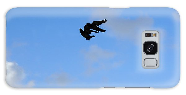 Pigeons Shadow Galaxy Case