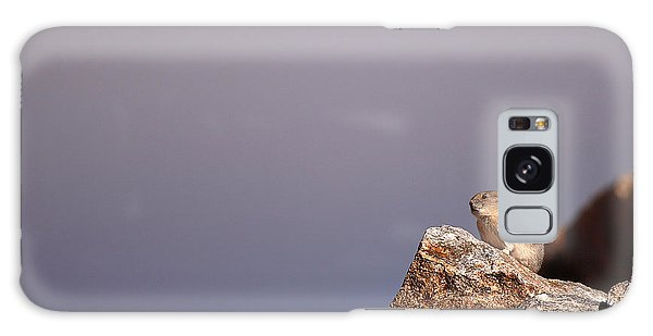 Pika Perched High Among Stormy Skies Galaxy Case