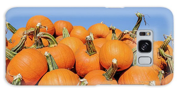 Pile Of Pumpkins Galaxy Case