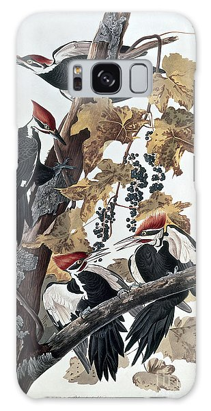 Pileated Woodpeckers Galaxy Case