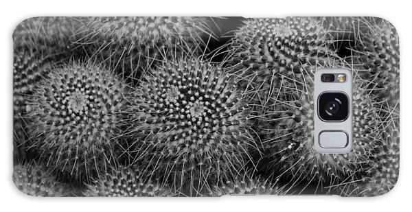 Pincushion Cactus In Black And White Galaxy Case
