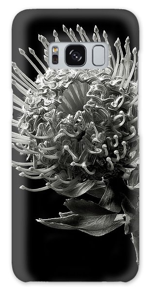 Pincushion Protea In Black And White Galaxy Case