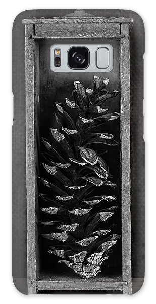 Framing Galaxy Case - Pine Cone In A Box Still Life by Tom Mc Nemar