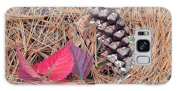 Pine Cone  Galaxy Case