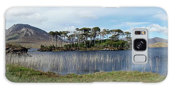 Pine Island Galaxy Case