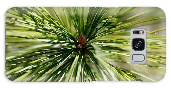 Pine Needles Galaxy Case