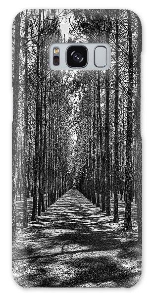 Pine Plantation 5655_6_7 Galaxy Case