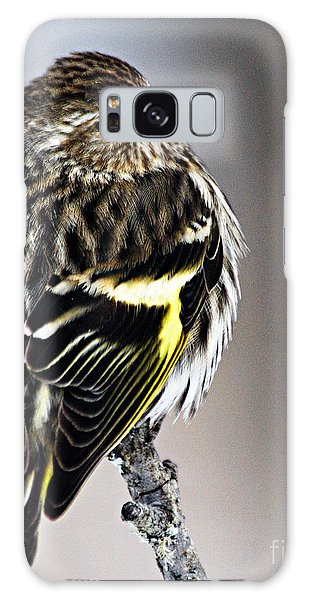 Pine Siskin Galaxy Case