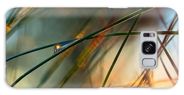 Pine Needle Sunset Galaxy Case
