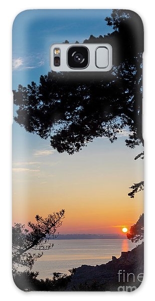 Pine Tree Galaxy Case by Delphimages Photo Creations